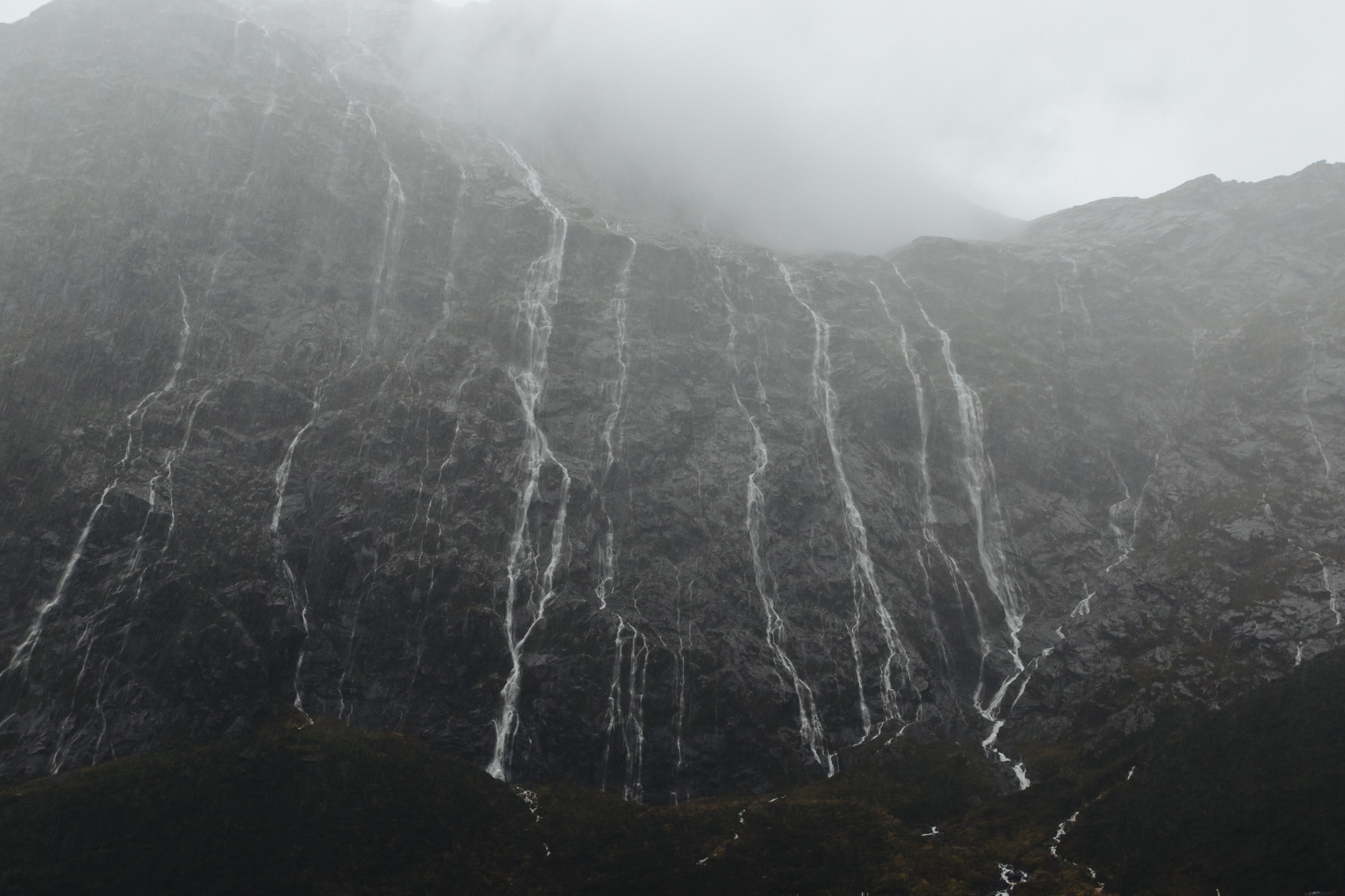 Rainy Milford Sound, New Zealand