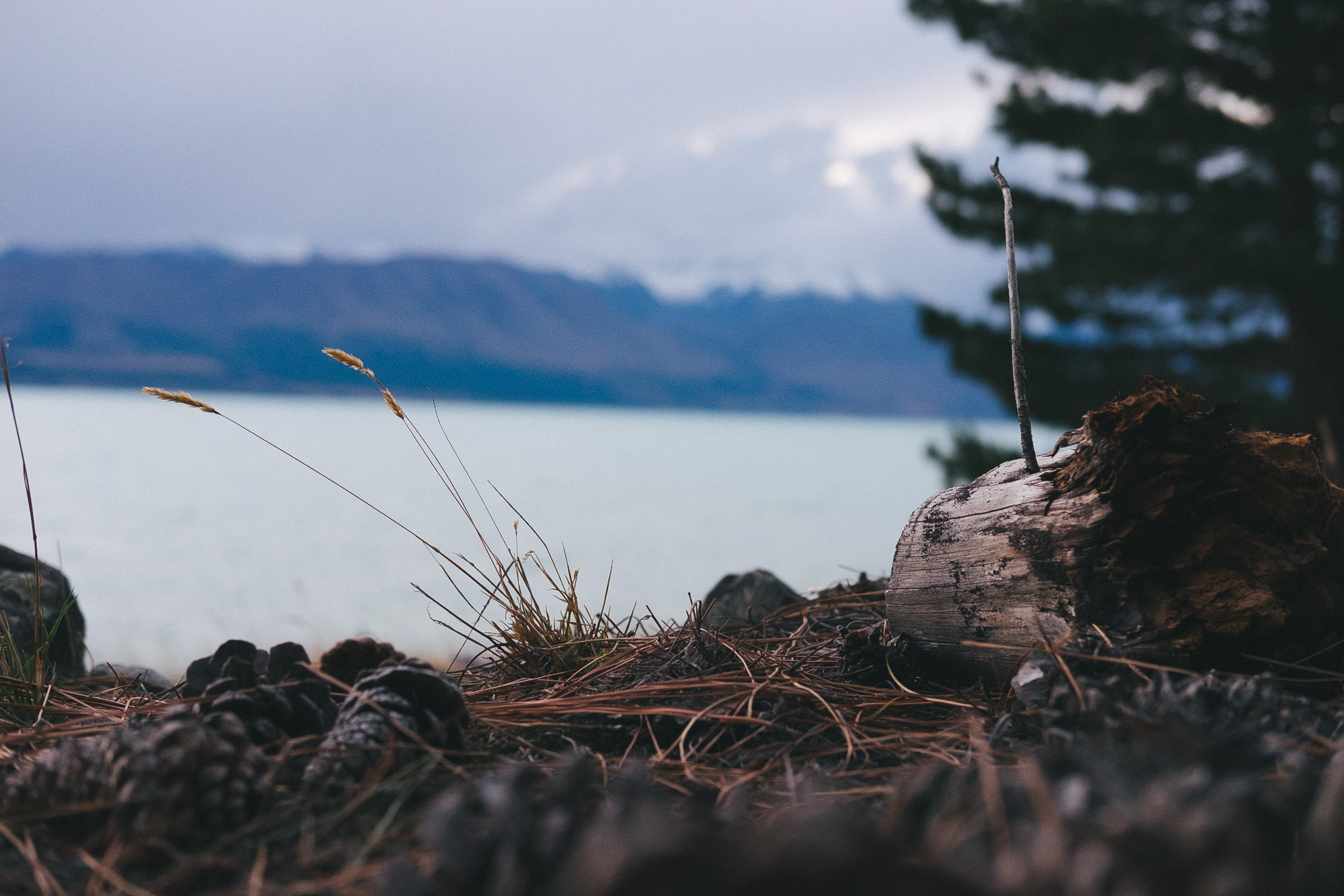 Lake Pukaki