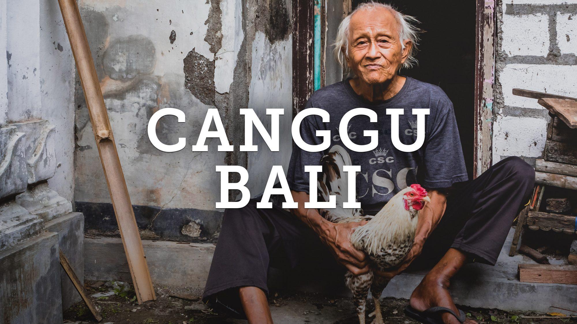Canggu Bali, Indonesia Photography Vlog