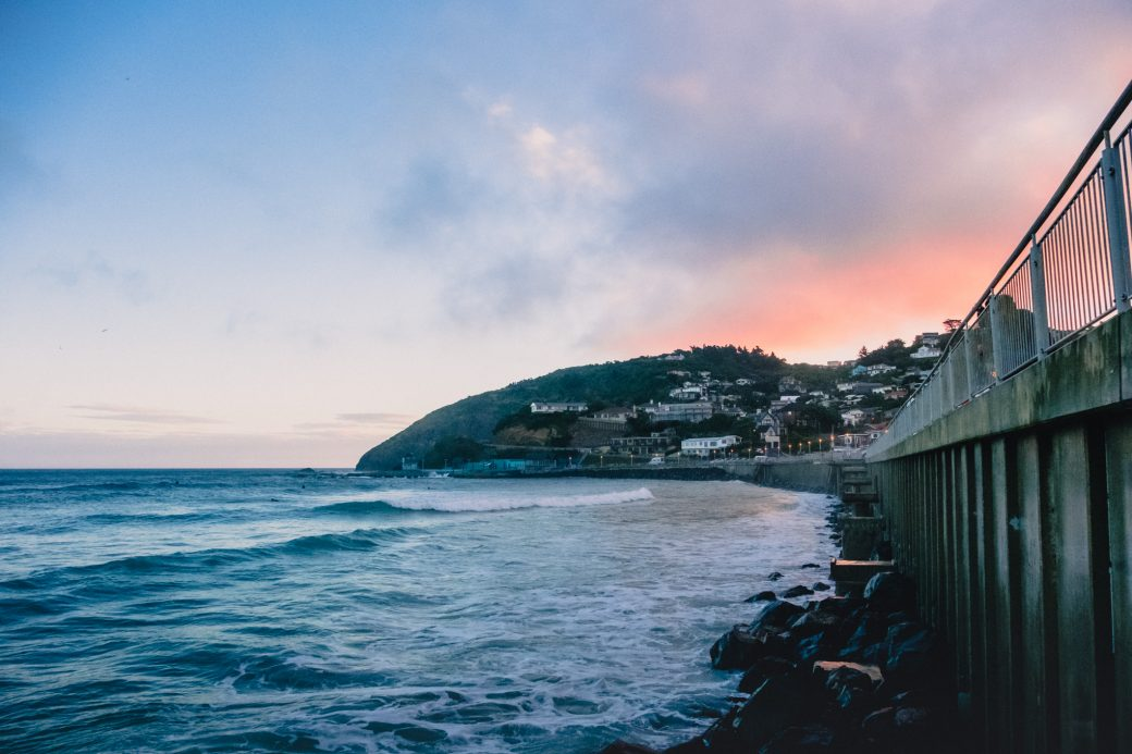 Dunedin Coast, New Zealand