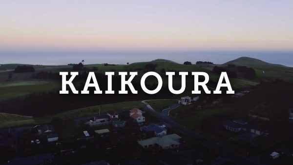 Kaikoura + Christchurch New Zealand Travel Vlog