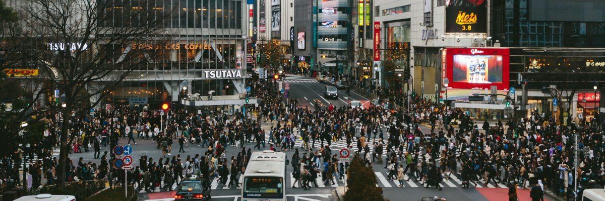 Japan Jelly Journeys